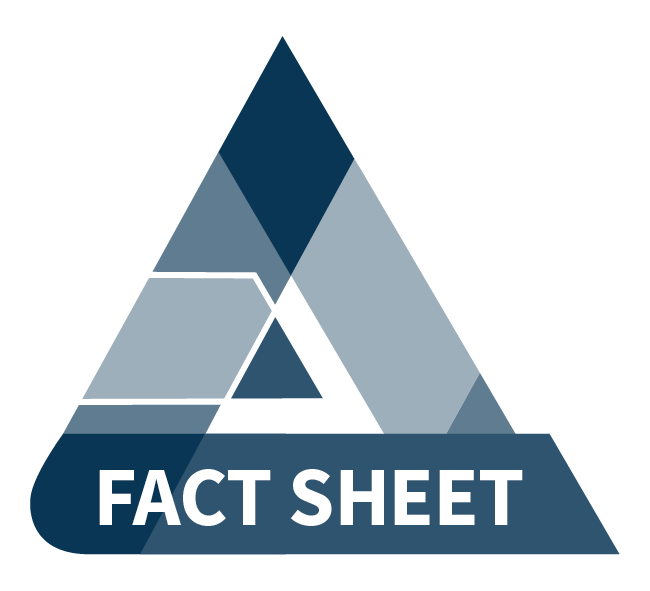 Video fact sheet icon - blue